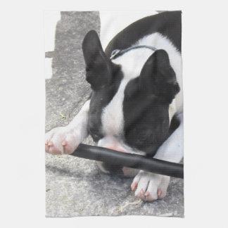 Puppy Towel