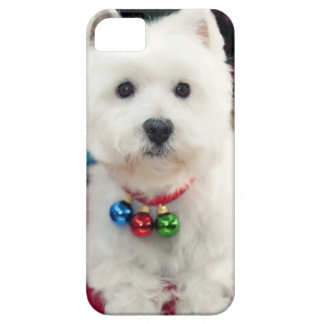 Puppy wearing Christmas bell on neck Case For The iPhone 5