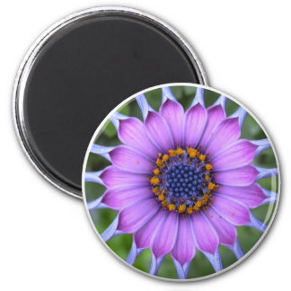 PUR-polarize more flower Refrigerator Magnets