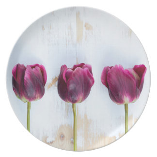 PUR-polarize tulips on white rustic wooden backgro Plate
