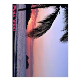 Pura Vida! Postcard