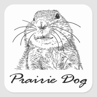 purairie dog face 3 square sticker