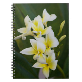 Pure Bliss Notebook