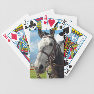Pure breed horse bicycle playing cards