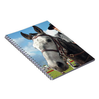 Pure breed horse notebook