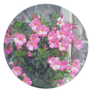 PURE PINK FLOWERS SHOW TEMPLATE UTILE PLATE