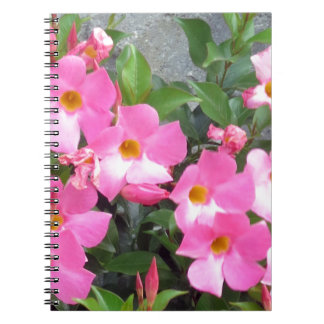 PURE pink smile FLOWERS Love Romance Sensual Gifts Spiral Notebook