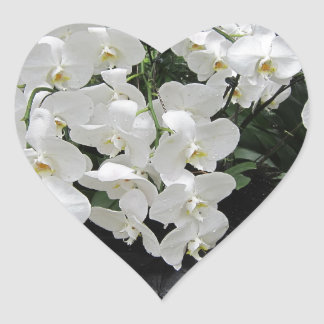 Pure prefection White flowers, Heart Sticker