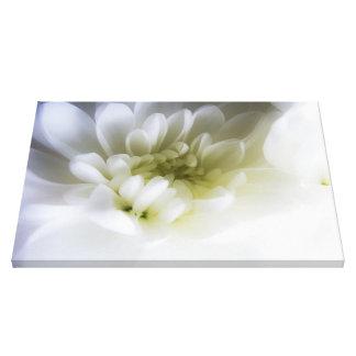 pure white canvas prints