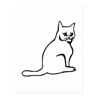 Pure White Cat Sitting Postcard