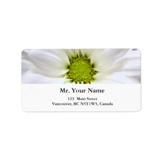 pure white daisy flower address label