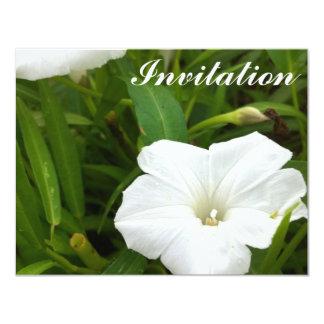 Pure White Flower 11 Cm X 14 Cm Invitation Card