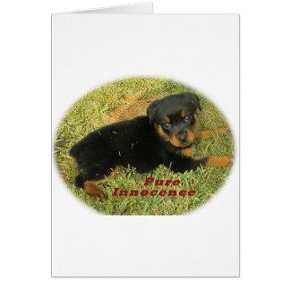 pureinnocence rottweiler puppy card