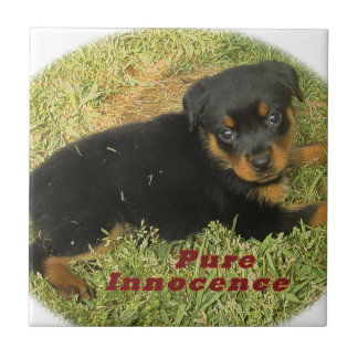 pureinnocence rottweiler puppy ceramic tile