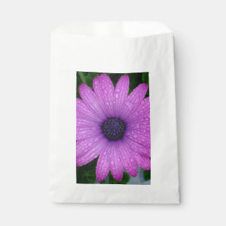 Purple African Daisy with Raindrops Favour Bag