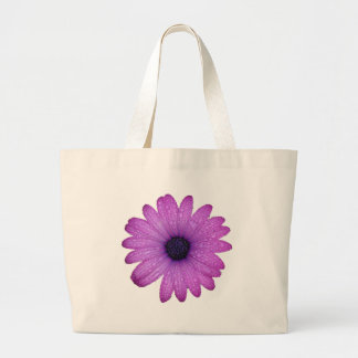 Purple African Daisy with Raindrops Isolated Large Tote Bag