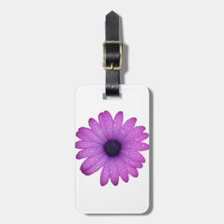 Purple African Daisy with Raindrops Isolated Luggage Tag