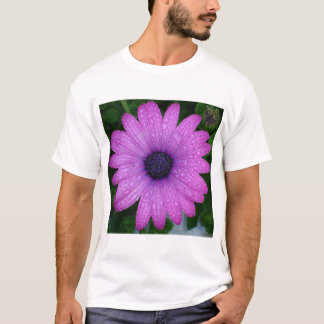 Purple African Daisy with Raindrops T-Shirt