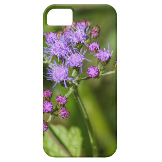 Purple Ageratum Wildflowers Barely There iPhone 5 Case