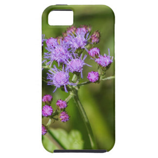 Purple Ageratum Wildflowers Case For The iPhone 5