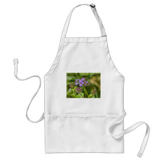 Purple Ageratum Wildflowers Standard Apron