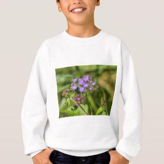 Purple Ageratum Wildflowers Sweatshirt