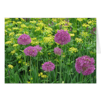 Purple Allium Note Card
