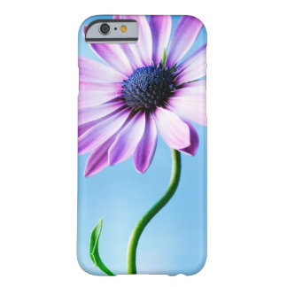 Purple and Blue Daisy Flower Floral Daisies Flower Barely There iPhone 6 Case