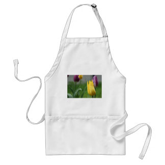 Purple and Gold Spring Tulips Standard Apron