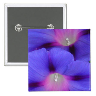 Purple and Pink Colored Morning Glory Flowers Clos Pinback Button