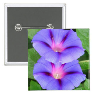 Purple and Pink Colored Morning Glory Flowers Pin