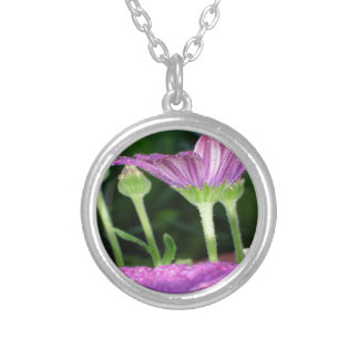 Purple And Pink Daisy Flower in Full Bloom Silver Plated Necklace