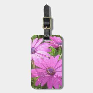 Purple And Pink Tropical Daisy Flower Luggage Tag