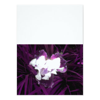 Purple and White Iris 14 Cm X 19 Cm Invitation Card