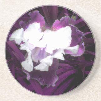 Purple and White Iris Beverage Coaster