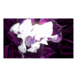 Purple and White Iris Business Cards