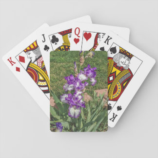 Purple and White Iris - Mother's Day, Get Well Playing Cards