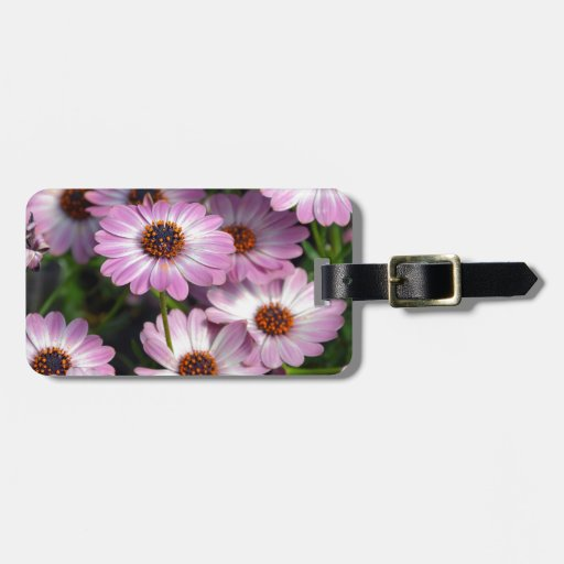 Purple and white osteospermum flowers travel bag tag