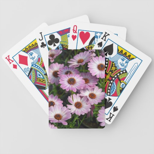 Purple and white osteospermum flowers bicycle poker cards