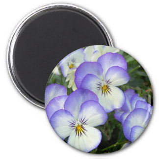 Purple and White Pansies 6 Cm Round Magnet