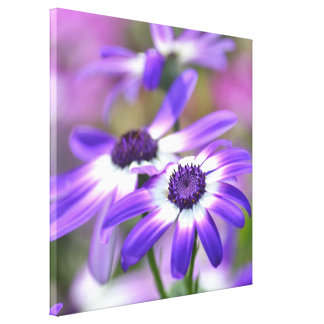 Purple and White Spring Flowers Canvas Prints