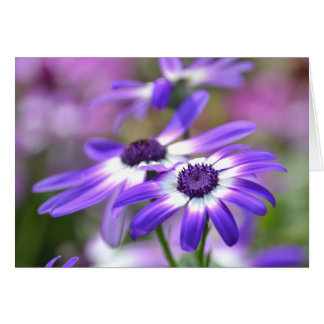 Purple and White Spring Flowers Greeting Card