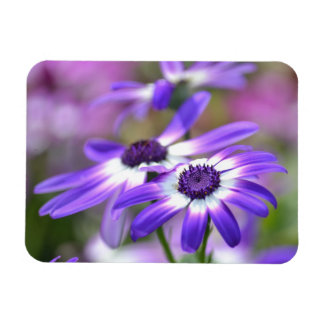 Purple and White Spring Flowers Rectangular Photo Magnet