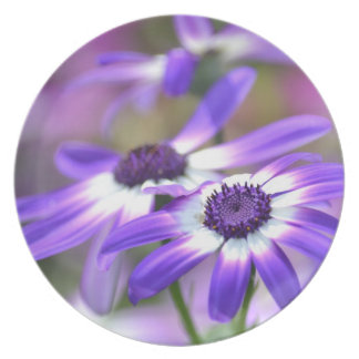 Purple and White Spring Flowers Plate