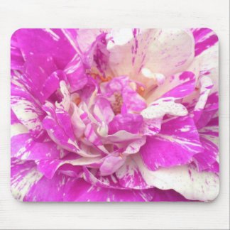 Purple and White Tiger Rose Mousepad
