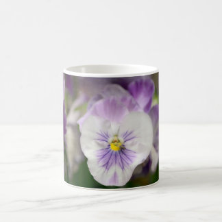 Purple and White Violas by Shirley Taylor Coffee Mug
