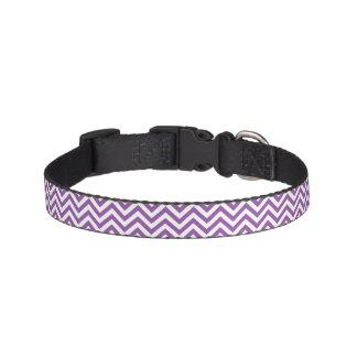 Purple and White Zigzag Stripes Chevron Pattern Pet Collar