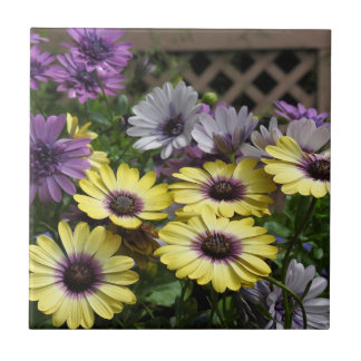 Purple and Yellow African Daisies Tile Trivet