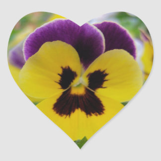 Purple and Yellow Flower Stickers