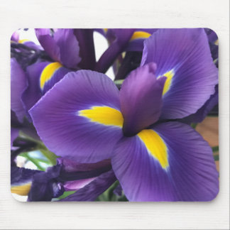 Purple and Yellow Irises Mouse Pad